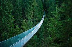 Puente en suspensión sobre el río Capilano en Vancouver, Canadá    Tiene 136 metros de largo y esta  a 70 metros sobre el río.      Foto de Michelle Lee.
