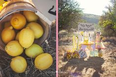 Lemonade stand  Amy Clemons Photography | Orange County, CA Photographer
