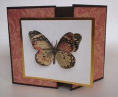 card idea, anniversary, butterfli card, butterflies, handcraft card