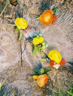 citrus colored boutonnieres, photo by Ben Q Photography, flowers by Bows and Arrows http://ruffledblog.com/color-pop-wedding-ideas #orange #yellow #ranunculus