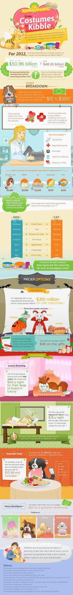 How much do you spend on your Pet's Halloween costume?