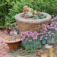 100 Container Gardening Ideas | Tiny Succulents | SouthernLiving.com