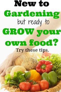 Gardening tips for newbies.
