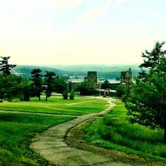 Libe slope. Ithaca, NY