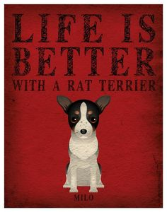 Life is Better with a Rat Terrier Art Print 11x14 - Custom Dog Print. $29.00, via Etsy. dachshund art, life, dogsincorpor, better, rat terrier art, art prints, baby dogs, rat terrier dogs, rat terriers