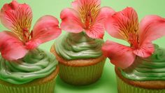 Nilbog green tea cupcakes