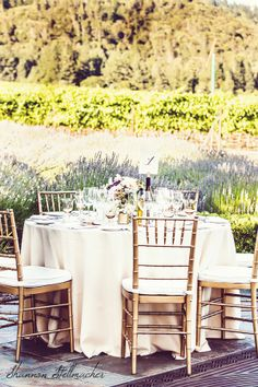 Shannon Stellmacher Photography at St. Francis Winery
