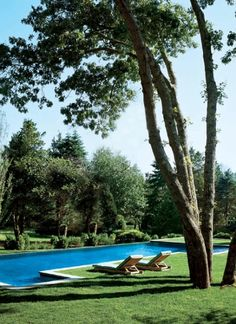 blue pool in green lawn. no patio