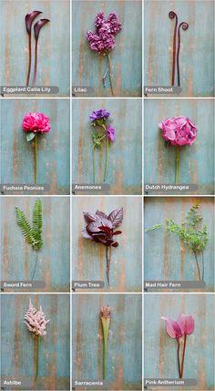 purple wedding flowers - create a wedding bouquet with these flowers: eggplant calla lily, liac, fern shoot, fuchsia peonies, anemones, dutch hydrangea, sword fern, plum tree, mad hair fern, astilbe, sarracenia and pink antherium