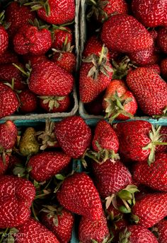 Strawberries at Minimally Invasive