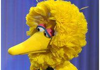 Image: File photo of Big Bird (© Chris Pizzello/AP)