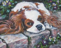 cavalier king charles spaniel art CANVAS print of by TheDogLover