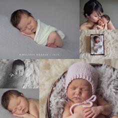 wny newborn photographer