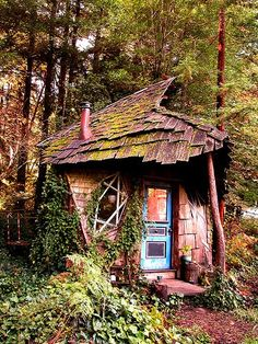 Whimsical Shed in the woods...