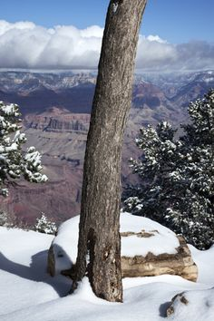 snow at the grand canyon