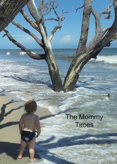 Botany Bay Beach, Edisto Island, SC  My little one...