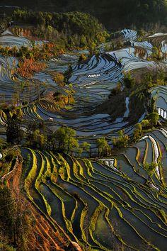 Mengzi, Honghe, Yunnan  China *mind blowing*