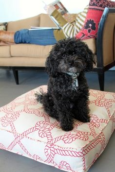 A great tutorial on making box cushions. (the black dog is too cute)