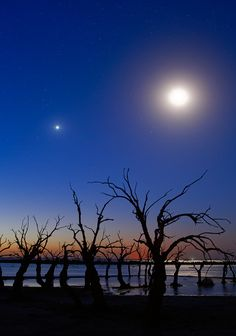 The Moon and Venus at Dusk (by lrargerich)