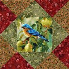 Fruit Bound Birds Quilt Blocks Kit. This kit makes 12 quilt blocks and they are pre-cut.