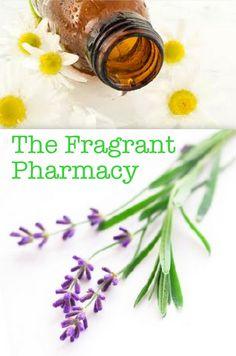 5 Essential Oils for Your Natural Medicine Cabinet