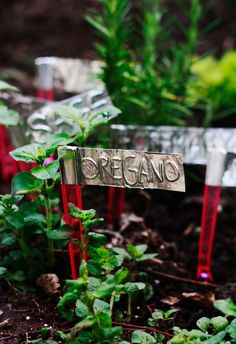 DIY herb garden labels from Aunt Peaches