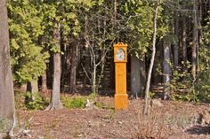 Clock in the Woods... Finding Beauty in the Unexpected. :: Hometalk