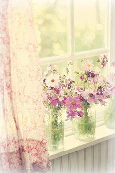 Cottage summer window