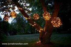 A fun DIY on how to create grapevine lighting BALLS :) pretty simple Martha  S. created the grapevine ornament years ago and at my house we make different sizes of natural grapevine this time of year also try a garden stake and some floral wire and make a grapevine Tree.