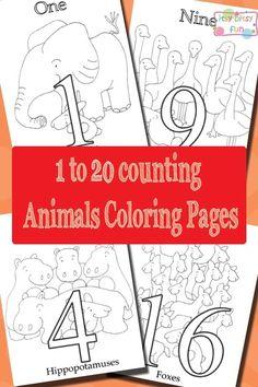 Animals Counting Num...