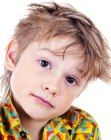 Boys haircut with short cropped sides. With layers, longer top hair and longer hair in the neck area. More hairstyles for boys: http://www.hairfinder.com/kidshairstyles/hairstyles_for_boys.htm