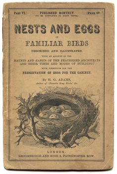 *The Graphics Fairy LLC*: Antique Ephemera Printable - Nests and Eggs Title Page