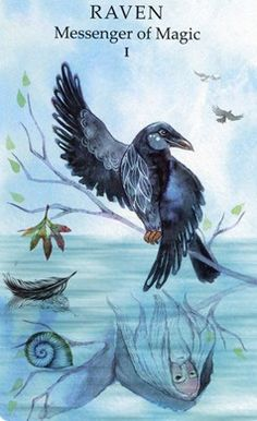 Animal Wisdom Tarot - Raven, Messenger of Magic (Magician)