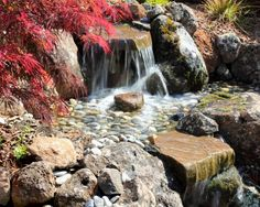 Pond Ideas Design, Pictures, Remodel, Decor and Ideas - page 3