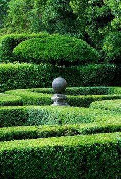 (via Pin by Amanda Wilkins on In the Garden | Pinterest)