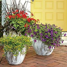 Warm and Cheerful Trio | Heat-tolerant geraniums, calibrachoas, and mecardonias in bright red, yellow, and purple shout a welcome in a cheerful way. | SouthernLiving.com