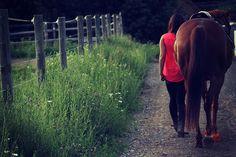 Horse portrait - Kellie Cope Photography www.facebook.com/KellieCopePhotography