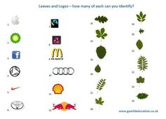 Leaves and logos