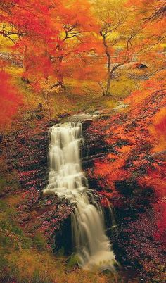 ✯ Autumn in Yorkshire Dales