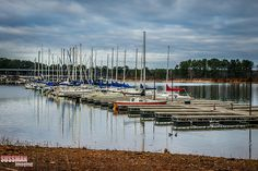 southern harbor marina | west point lake | al-ga border