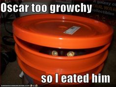 Funny cat pictures by Mdf1281, via Flickr
