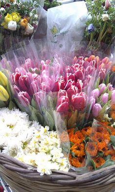 ♔ The Flower Shop