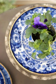 Potted pansy for each table setting