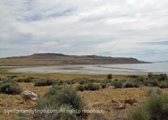 UTAH: Can you swim in the Great Salt Lake? Yes! Here's how: