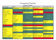 Vegetable companion planting chart. So helpful!