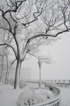 Brooklyn Heights Promenade, NYC