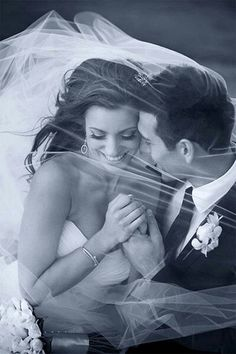 Amazing wedding photo... in the veil