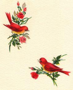 vintage bird imag, greet card, candi, paper birds, vintage birds, collag, vintag greet, vintage greeting cards, vintage style