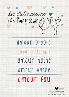 Les déclinaisons de l'amour-The types of love:amour-propre-self-love/amour platonique - platonic love/amour vache-tough love/amour-haine- love-hate/amour fou-crazy love