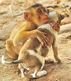 A hug makes everyone feel better.